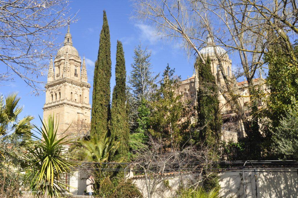 Curso de fotografía básica en salamanca aprende a usar tu cámara taller de fotografía básica en salamanca Salamanca Madrid Valladolid Ávila Eduardo nuca espacio nuca fotógrafo fotografía imágenes